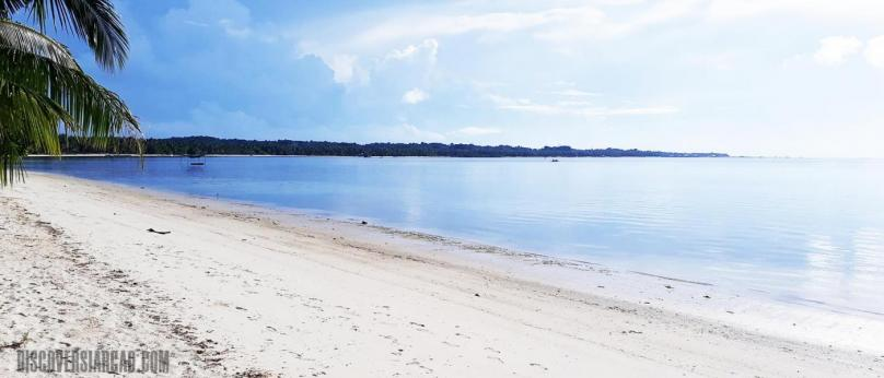 7,000 sqm Siargao Beach Front and Coco Land Property For Sale