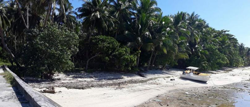 5,000 sqm Beach Front Property in Siargao For Sale