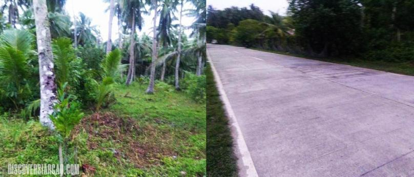 2,700 sqm Lot for Sale in General Luna Siargao Island