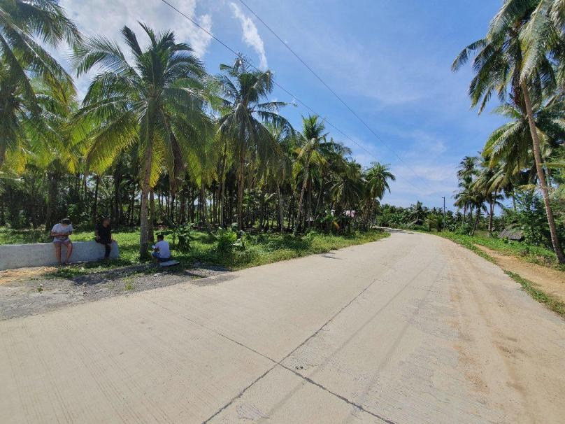 1,000 sqm Libertad GL Siargao Lot For Sale