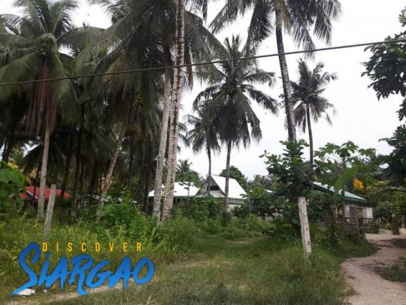 38 sqm Lot For Sale in General Luna Siargao