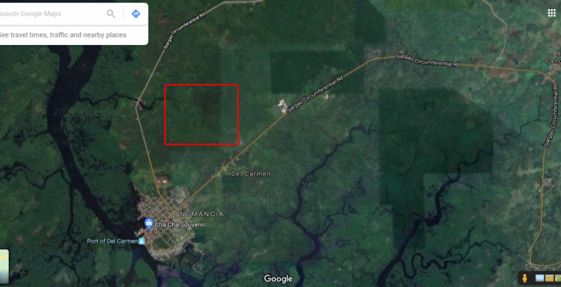 13.5 Hectare Lot For Sale in Del Carmen Siargao Island