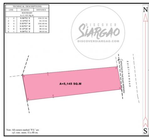 5,145 sqm Lot For Sale Along the Road in Pacifico Siargao