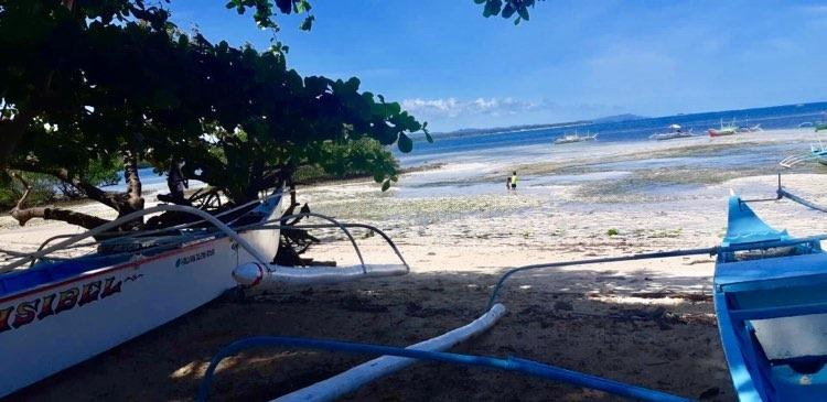 6,642 sqm Beach Front For Sale Near Cloud 9 Catangnan General Luna Siargao