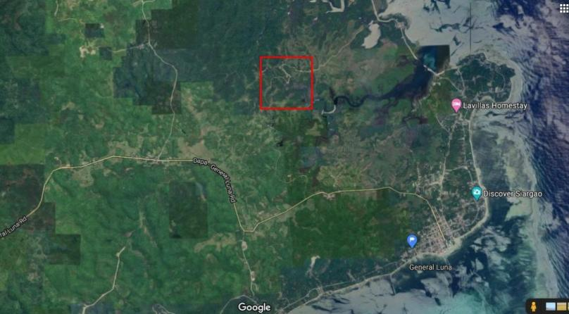 3 Hectare Lot For Sale in Magsaysay General Luna Siargao Island Philippines