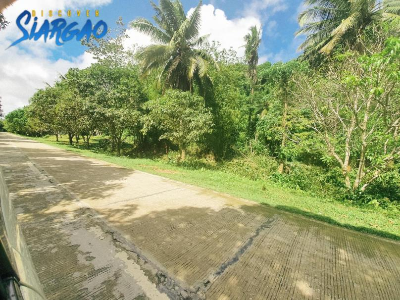 596 sqm Roadside Lot in Binayuto Tawin-Tawin GL Siargao