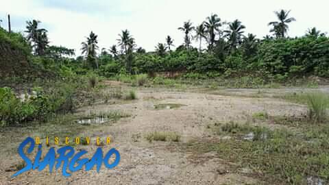 7,000 sqm Roadside Lot For Sale in Osmena Dapa Siargao