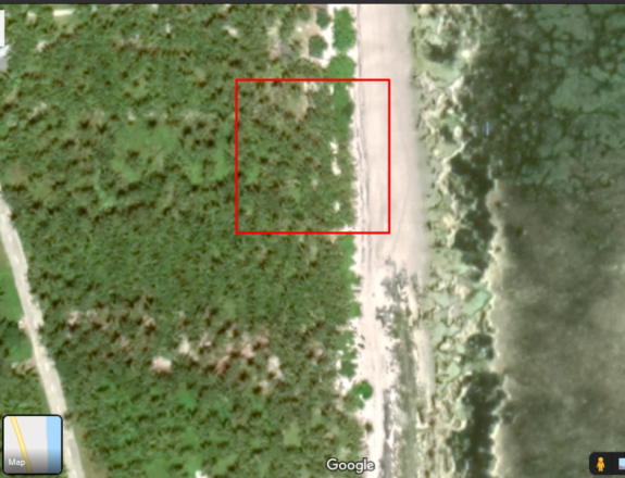 2,700 White Sand Beach Lot For Sale in Alegria Sta. Monica