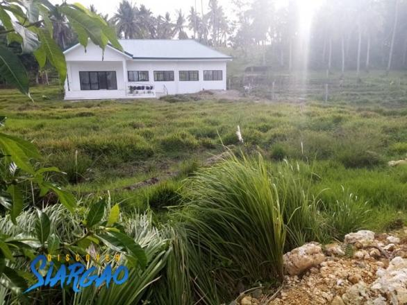 500 sqm Road side Lot For Sale in Libertad General Luna Siargao Island.