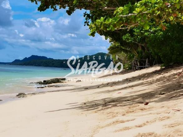 3,800 sqm White Sand Beach Front For Sale in Alegria Siargao