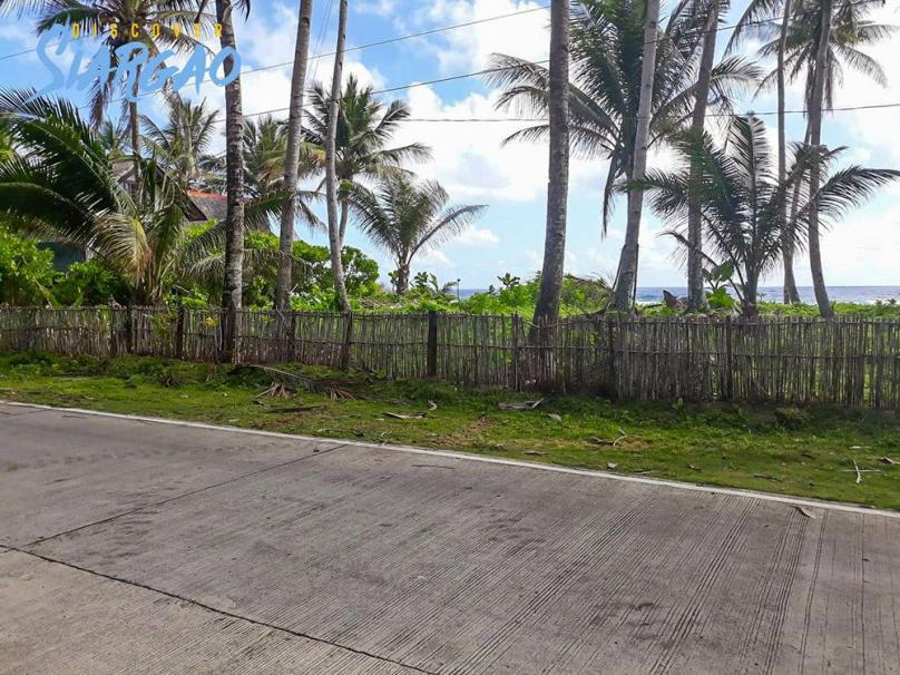 1,183sqm Beach Front in Pacifico Siargao Island For Sale