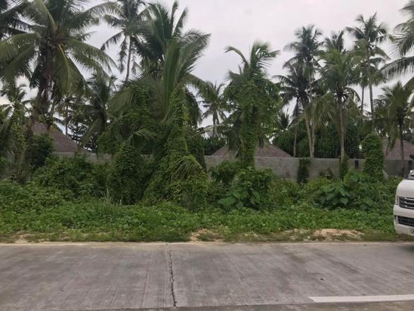 307 sqm  Siargao Lot For Sale Near Cloud 9