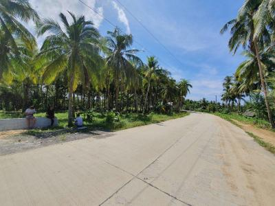 1,000 sqm Siargao Lot For Sale