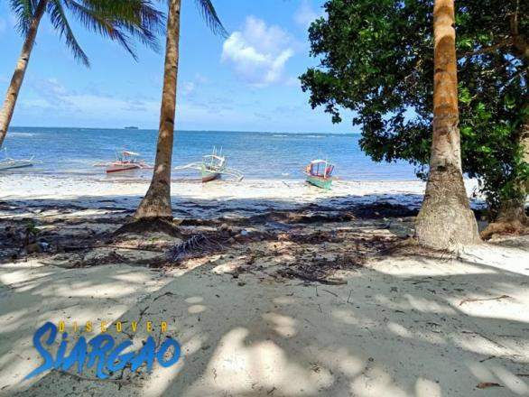 2,900 sqm Beach Front For Sale General Luna Siargao Island.
