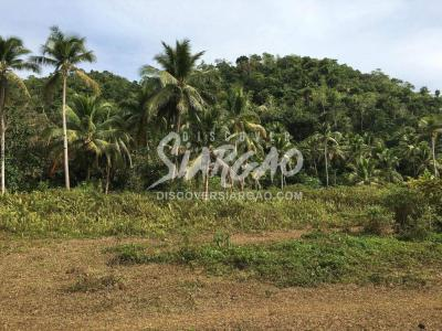 18.7 Hectare or 187,530 sqm Land For Sale in Osmena Dapa Siargao