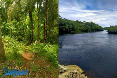 3,000 sqm Riverside Lot For Sale in San isidro Siargao Island