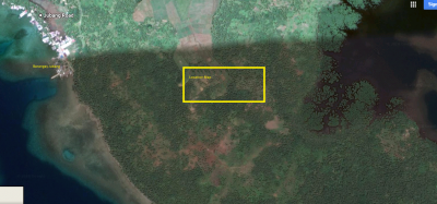 1 Hectare Property Lot in Jubang Dapa near International Cruise Ship Port Siargao Island