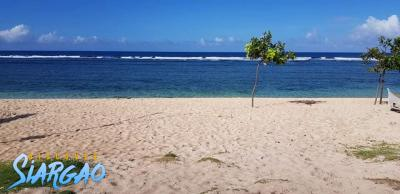133 sqm White Sand Beach Front For Sale in Pacifico San Isidro Siargao