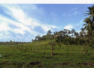 2,879 sqm Lot For Sale in Catangnan General Luna Siargao Island