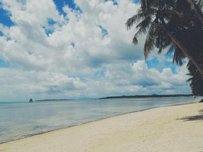 5,261 sqm Beach Front in Malinao GL Siargao