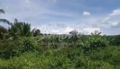 7,627 sqm roadside lot or along the road in Magsaysay General Luna Siargao