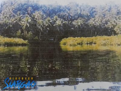 39,704 sqm Ocean Front For Sale in Cambas-ac Dapa Siargao Island Surigao