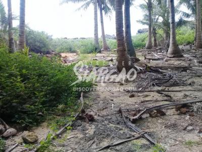 9,788 sqm Ocean Front For Sale in Mag-aso Burgos Siargao Island