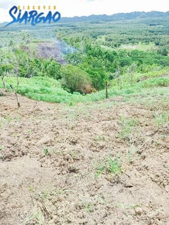 4.7 Hectare Overlooking Land For Sale in Sta. Paz, Roxas, San Isidro Siargao Island