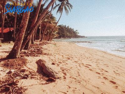5,552 sqm Beach Front and Surfing Spot For Sale in Sta. Monica Siargao