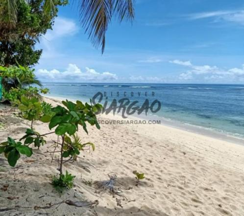 8,551 sqm White Sand Beach For Sale in Pacifico San Isidro Siargao