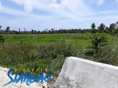 1,000 sqm Near the Surfing Beach of Pacifico San Isidro Siargao Island.
