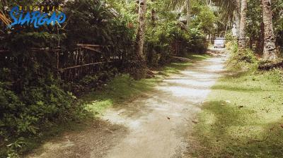 250 sqm Lot For Sale Near Surfing area in Tangbo Sta. Monica Siargao
