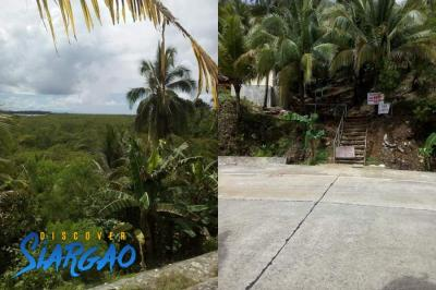 3,000 sqm Lot For Sale in San Benito Siargao Island