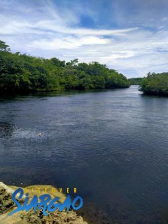 3,000 sqm Riverside Lot For Sale in San isidro Siargao Island