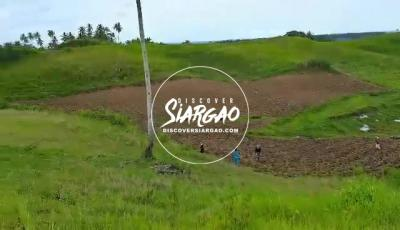 2.3 hectare vacant lot for sale in Magsaysay General luna , Siargao Island