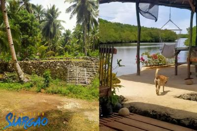 2,000 sqm Lot For Sale near the River in San Isidro Siargao