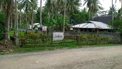 670 sqm Road side Lot For Sale in Catangnan General Luna Siargao ISland