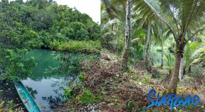 1.3 Hectare Property Lot on River side in Libertad GL Siargao