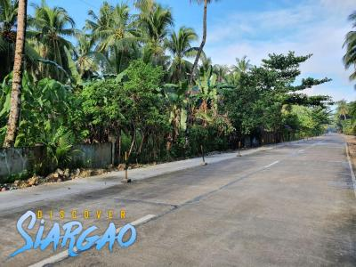 250 sqm Roadside Lot For Sale in Purok 1, General Luna Siargao Island