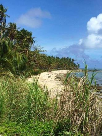 524 sqm Beach Front For Sale near  Burgos Siargao