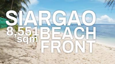8,551 sqm White Sand Beach For Sale in Pacifico San Isidro Siargao