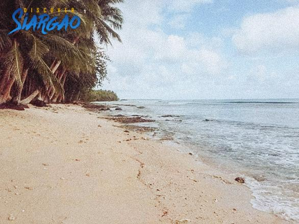 3.7 Hectare Beach Front for Sale in Salvacion Pilar Siargao