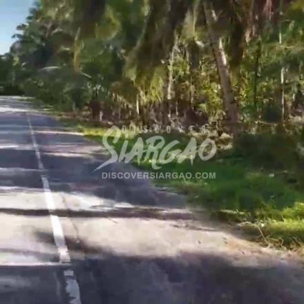 1 Hectare Roadside Lot For Sale in Tigasao San Isdro Siargao Island