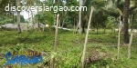 2,510 sqm Lot For Sale Near Cloud 9