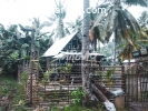 427 sqm House and lot For Sale in Purok 1, General Luna