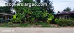 Commercial Lot For Sale in Cloud 9 Siargao