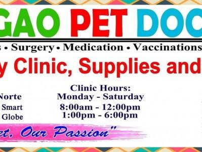 thumb_surigao-siargao-pet-doctors-clinic