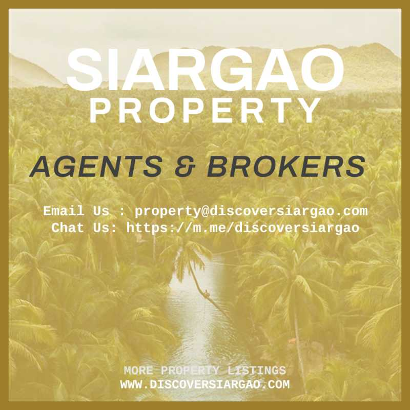 siargao-island-property-real-estate-agents-and-brokers-contact.jpg