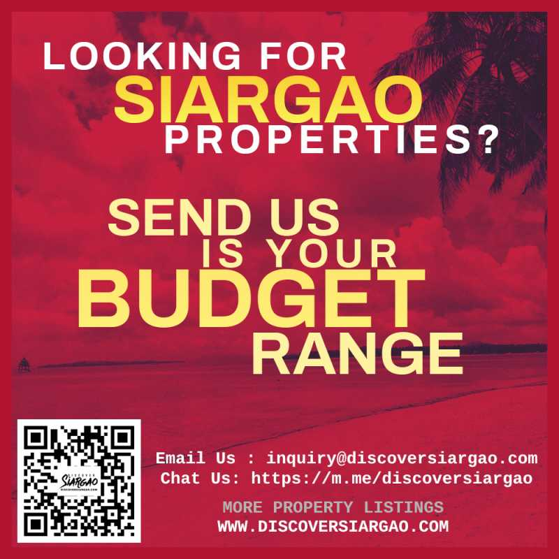 siargao-properties-for-sale-looking-for-budget.jpg