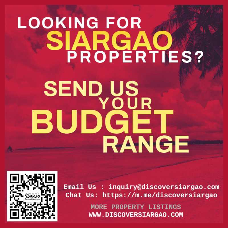 siargao-properties-for-sale-looking-for-budget_2020-10-28.jpg